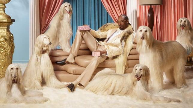 Snoop Dogg Klarna campaign